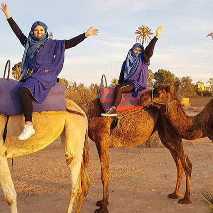 Marrakech-camel-ride-and-Marrakech-camel-trekking